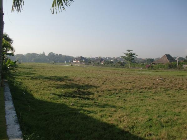 View from mid to rear of the land