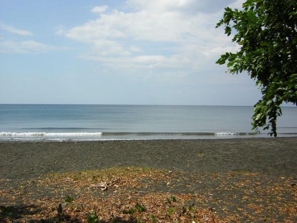 Beach  view #1