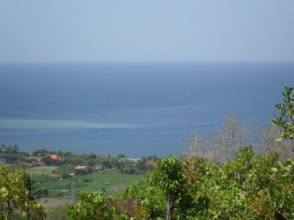 Ocean views #1