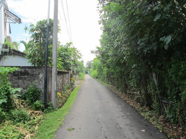 Road Access 1